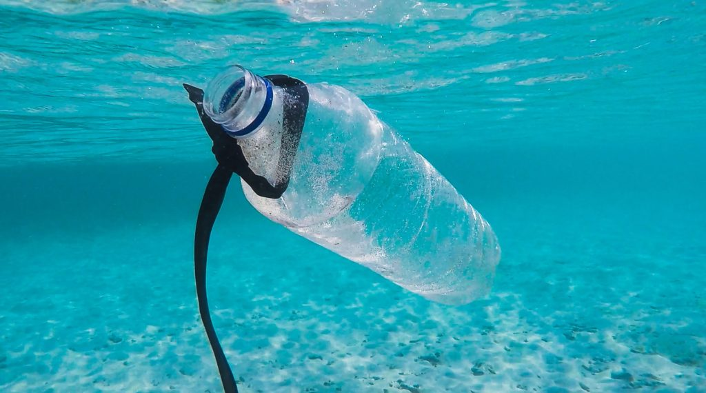 Single-use plastics destroy our oceans