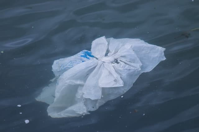 plastic pollution sea